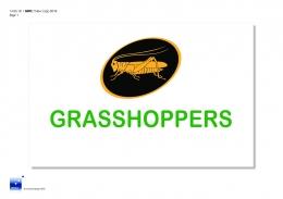 Grasshoppers New Logo