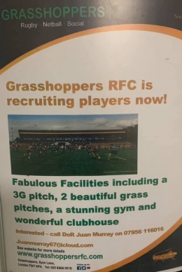 Grasshoppers RFC is Recruiting for 2019/20 Season