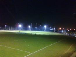 Grasshoppers 'switch on' floodlights